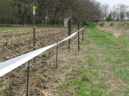 Electric Fencing For Food Plots